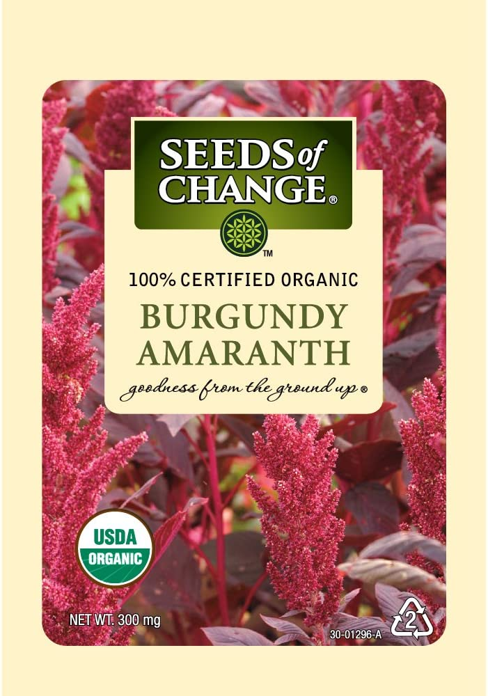 Seeds of Change 1296 Amaranth, Burgundy