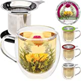 Teabloom Double Wall Glass Mug with Infuser & Lid Black