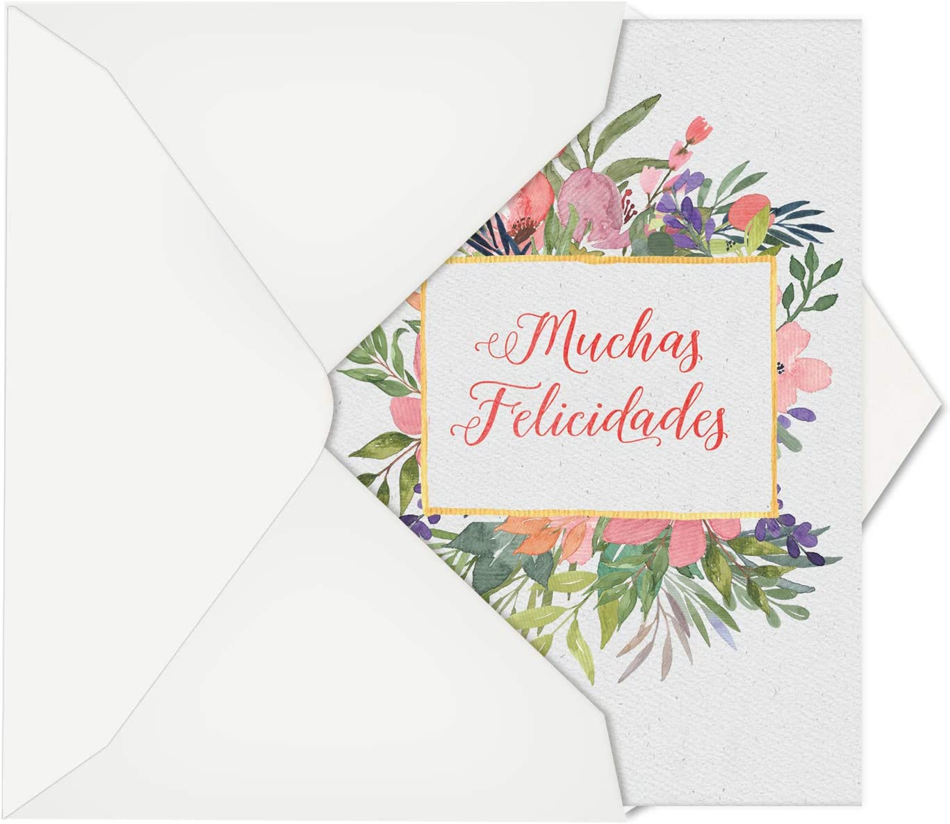 Muchas Felicidades: Hilarious Congratulations Greeting Card With Watercolor Flowers Boxing in Felicitations, with Envelope. C6645CGG-SL