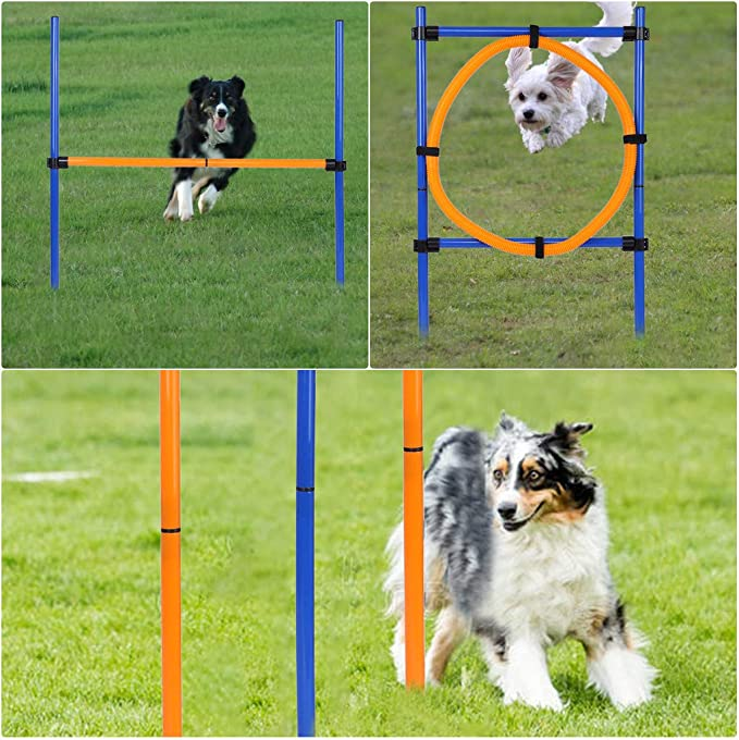 adjustable agility ladder speed training equipment,Perforated barricade dog agility equipment HYwot dog agility obstacle cone group