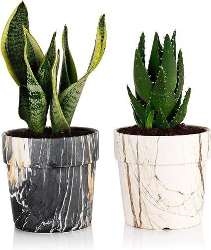 Small Marble Stoneware Ceramic Tripod Planter Pot