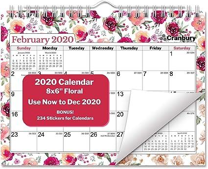 Calendario de pared pequeño 2020 de 8 x 6 meses, 16 meses de septiembre de 2019 a diciembre de 2020: Amazon.es: Oficina y papelería
