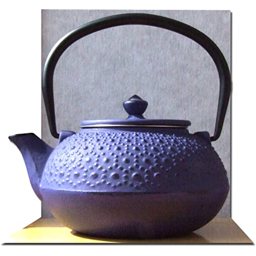 Cast Iron Purple Tetsubin teapot kettle 0.6 litre