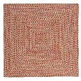 Catalina Polypropylene Braided Square Rug, 4-Feet, Fireball Review