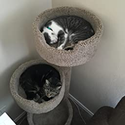 Amazon Com New Cat Condos Deluxe Kitty Pad Beige Pet Supplies