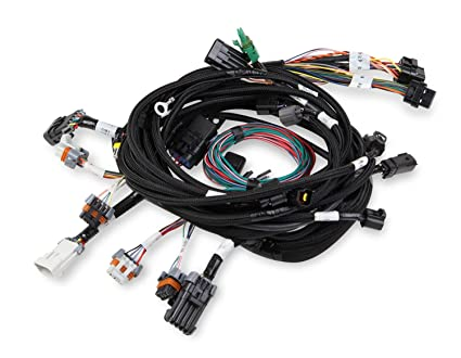 Amazon com: Holley EFI 558-108 Injector Harness Main Harness For HP