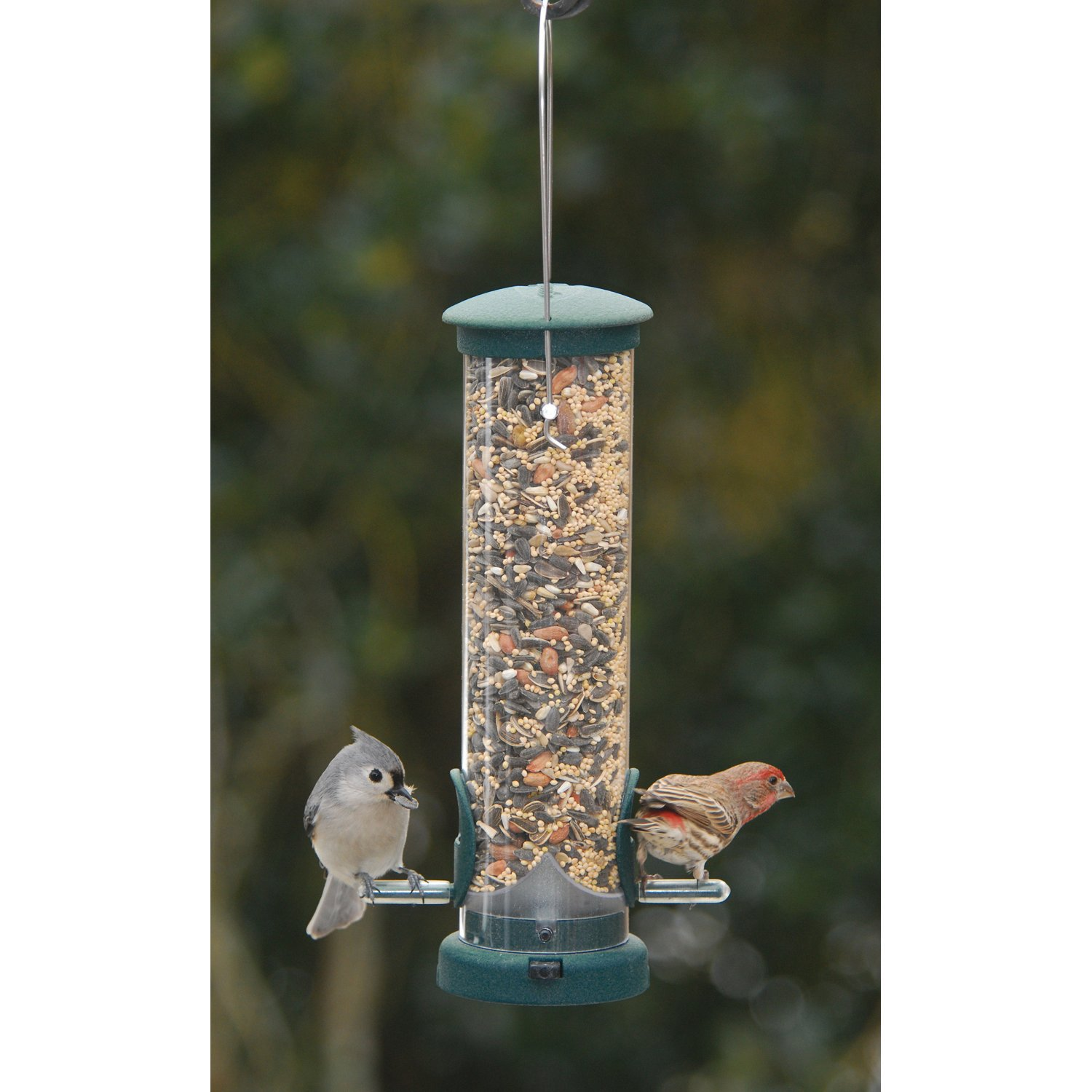 Aspects 422 Quick Clean Seed Tube Feeder, Spruce, Small by Aspects