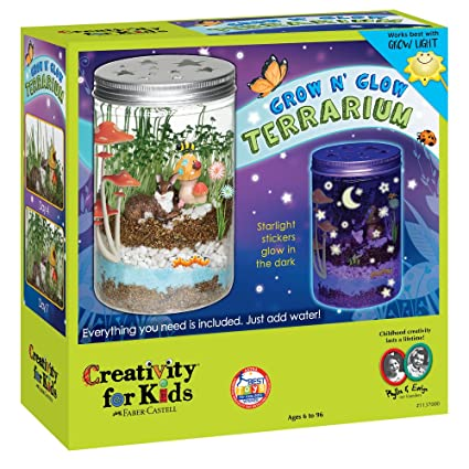 amazon com creativity for kids grow n glow terrarium science kit