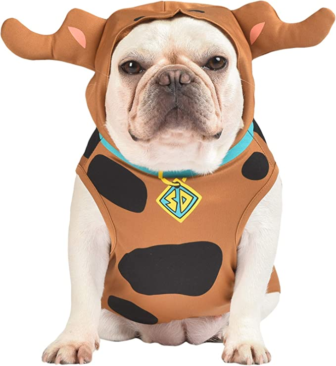 Amazon.com: Scooby-Doo Warner Brothers Scooby Doo disfraz para perros, XS: Mascotas
