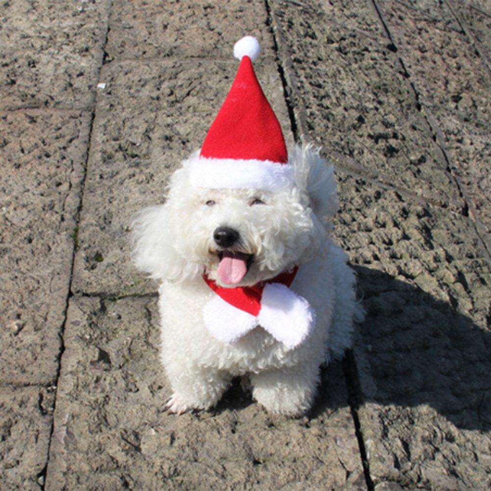 Bello Luna Pet Weihnachten Schal und Hut Set Hund Weihnachten Kostüm ...