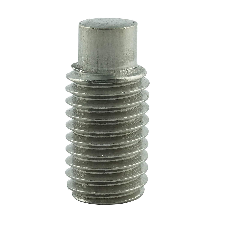 Edelstahl A2 V2A M6 x 8 mm Gewindestift mit Innensechskant und Zapfen 40 St/ück rostfrei Gewindeschrauben Eisenwaren2000 ISO 4028 - Madenschrauben DIN 915