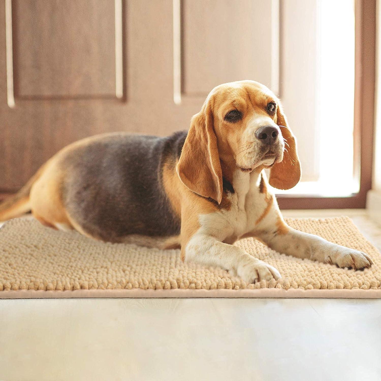 Delxo Indoor Durable Chenille Door mat 30