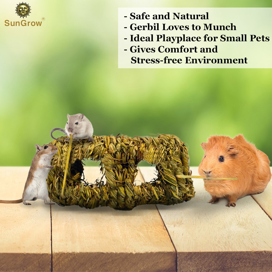 Hand-woven Seagrass Tunnel Toy --- Small Animal Activity Center from SunGrow - Pet-safe, all natural grass tunnel house - Perfect for Rabbits, Gerbils, Hamsters and Chinchillas