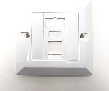 MainCore 1 puerto CAT5e RJ45 placa frontal de pared de pared LAN con tomas Keystones (disponible en individual, doble, Quad y puerto) (1 puerto): Amazon.es: Industria, empresas y ciencia