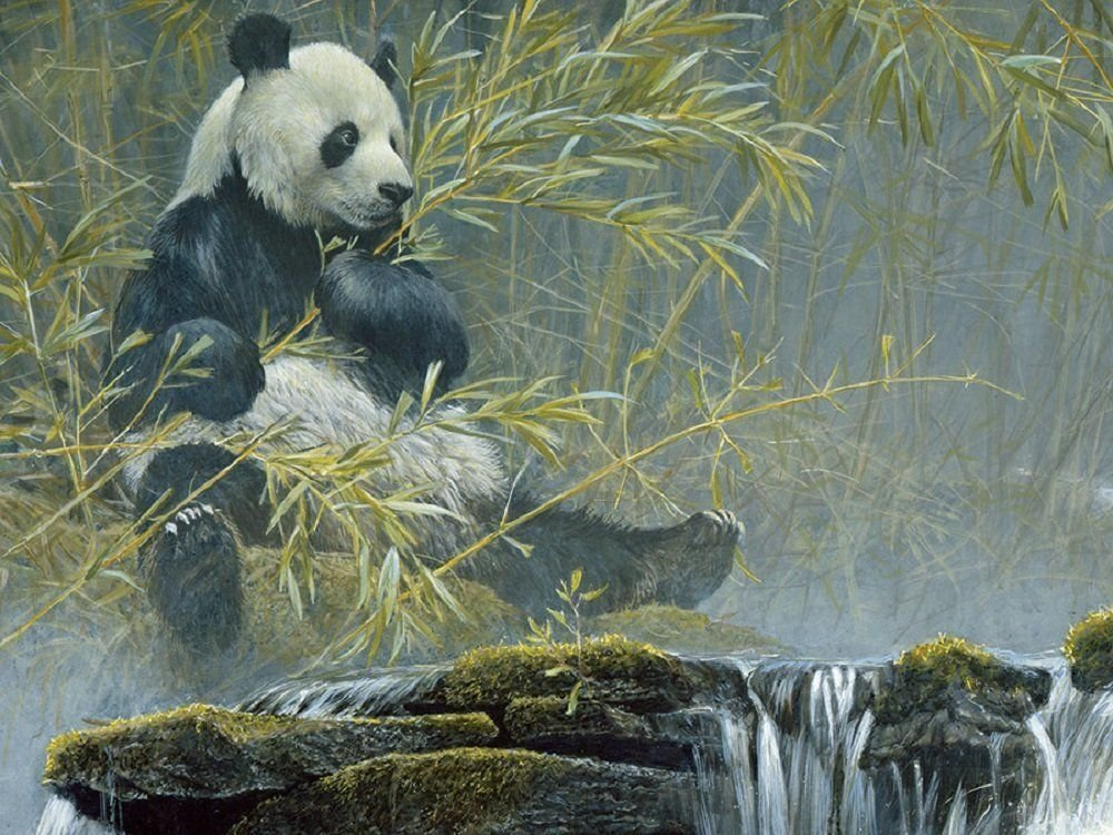 Cobble Hill Giant Panda Jigsaw Puzzle, 500-Piece by Cobble Hill