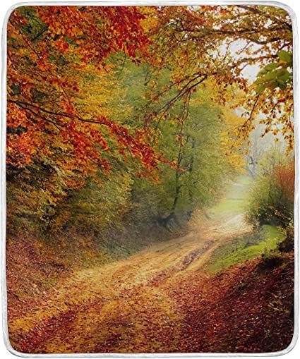 Ahomy Throw Blankets Road Forest Season Autumn Fall Landscape Nature Super Soft Blanket 127x152cm Machine Washable Suitable For Bed Chair Or Sofa Amazon Co Uk Kitchen Home
