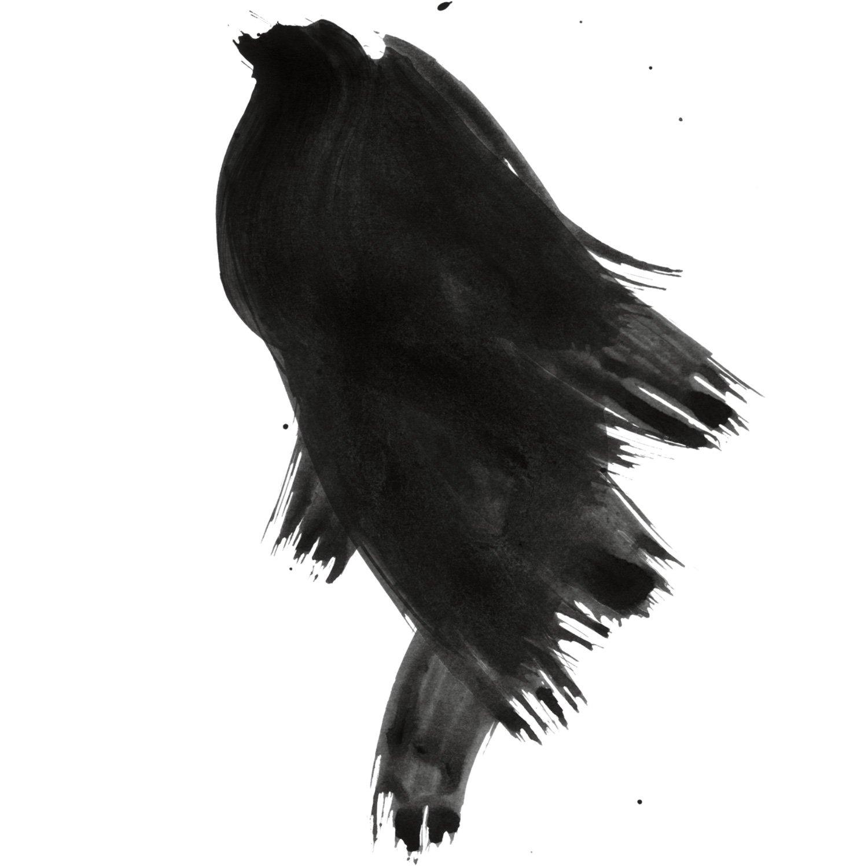 Daler-Rowney FW Artists' Ink black 6 oz.