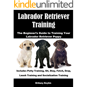 Labrador Retriever Training: The Beginner's Guide to Training Your Labrador Retriever Puppy: Includes Potty Training…