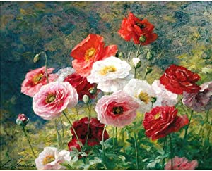 Diy Full Area 5D Diamond Painting Colored Poppies Flowers,Handmade Paste Painting Resin Kit Home D¨¦cor Wall Decoration (19.7X25.6Inch)(Frameless)