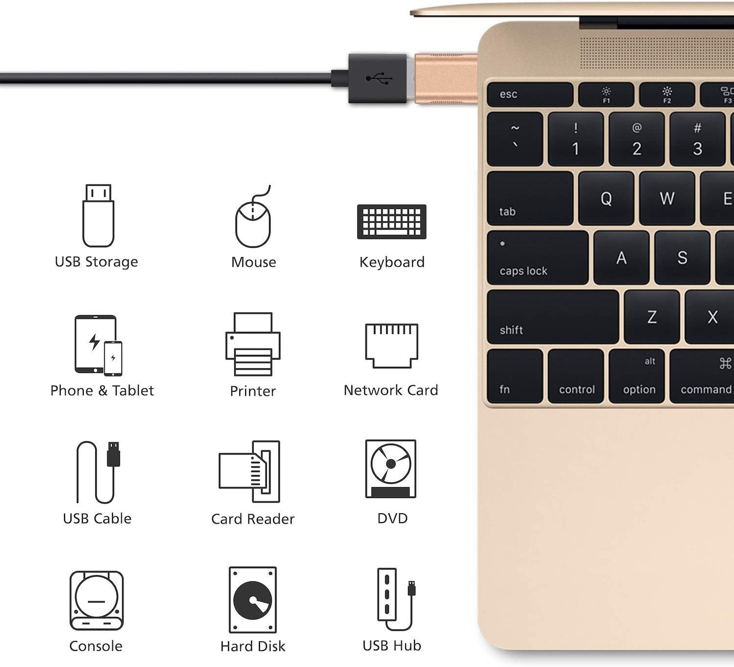 nonda USB C to USB Adapter Gold ,USB-C to USB 3.0 Adapter,USB Type-C to USB,Thunderbolt 3 to USB Female Adapter OTG for MacBook Pro 2019//2018,MacBook Air 2018,and More Type-C Devices 2 Pack