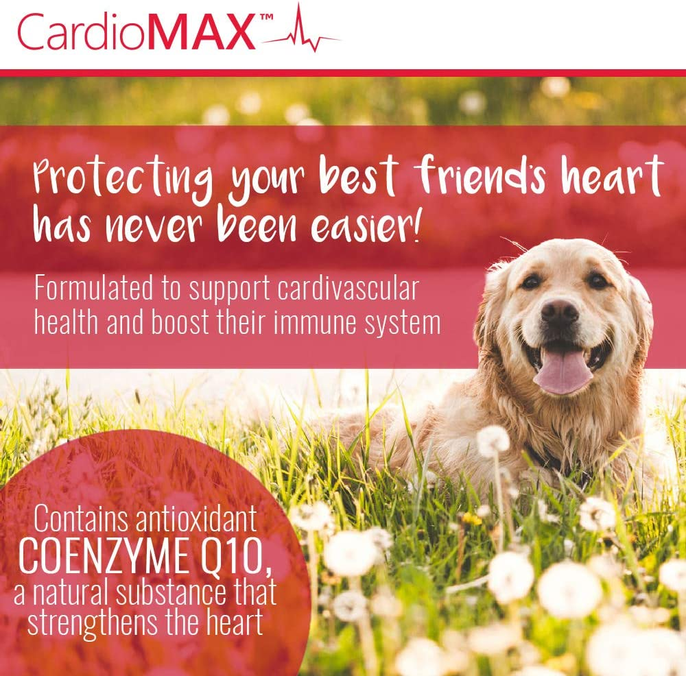 Pet Health Solutions CardioMAX Heart Support Supplement for Dogs – L-Taurine, L-Carnitine, EPA and DHA, Coenzyme Q10 – Aids Circulatory Strength, Heart Muscle Function – Made in USA – 60 Soft Chews