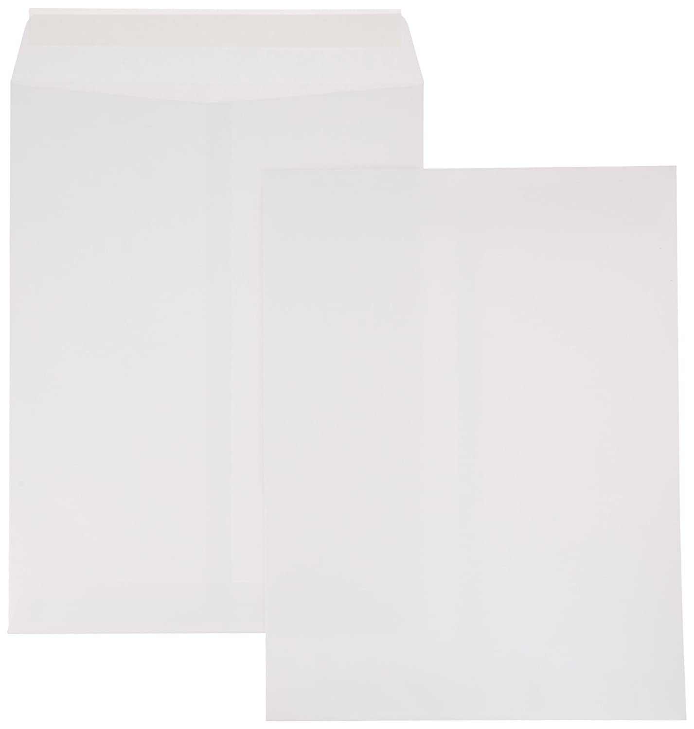 AmazonBasics Catalog Envelopes, Peel & Seal, 9 x 12 Inch, White, 100-Pack