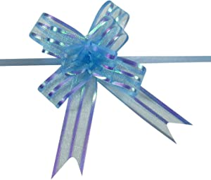 Gift Pull Bows for Presents, Weddings, Birthdays, Baby Showers, Iridescent Sheer Organza Ribbon, 3/4 Inch Wide, Set of 10