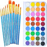 Watercolor Paint Art Set, 36 Colors Professional Watercolor Paint Set with 10 Pcs Watercolor Artist Set Brush for…