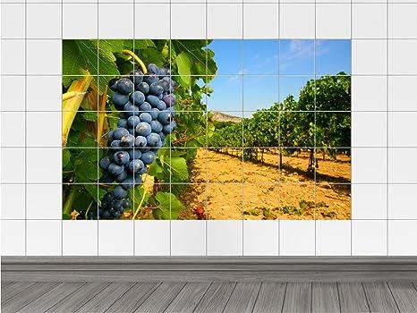 Graz design piastrelle adesivo piastrelle immagine dell uva campo