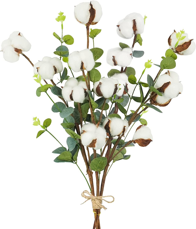 Phliofd 4pcs Eucalyptus Cotton Stems 25.5