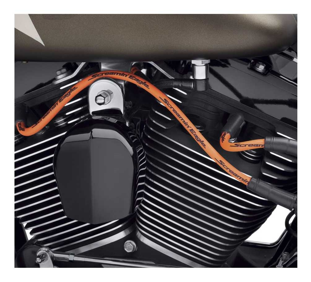Harley-Davidson SCREAMIN Eagle 10 mm Phat Bujía de cables, 2 cables 32325 - 08: Harley-Davidson: Amazon.es: Coche y moto