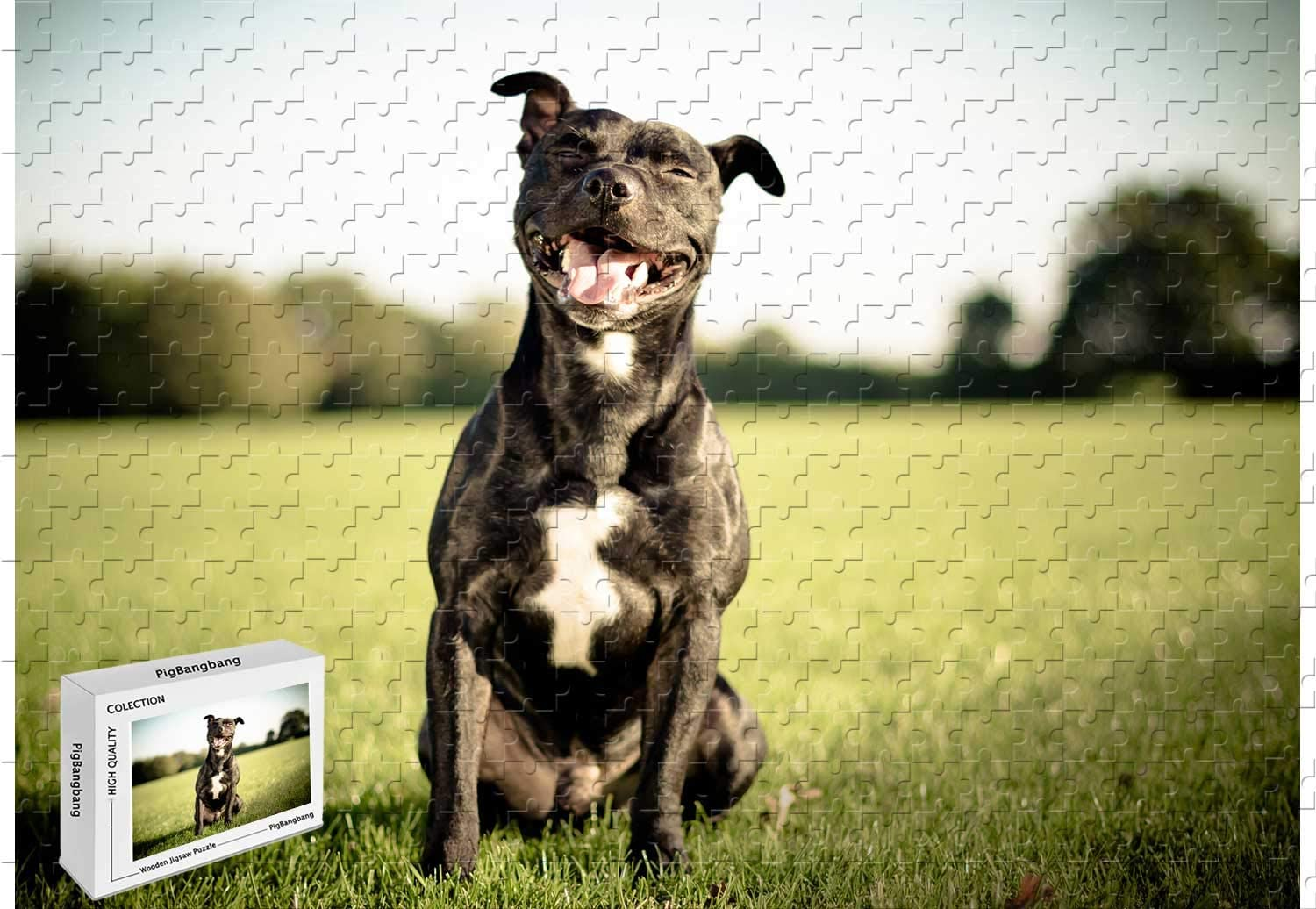 wooden pit bull dog puzzle