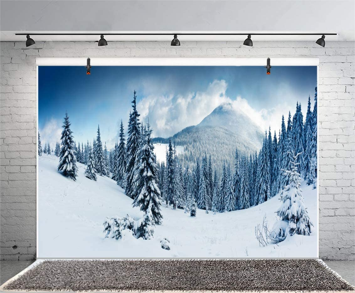 OERJU 10x8ft Winter Backdrop Ice and Snow Mountain Forest Merry Christmas Background for Photography Happy New Year Party Banner Winter Holiday Kids Adults Xmas Photo Background