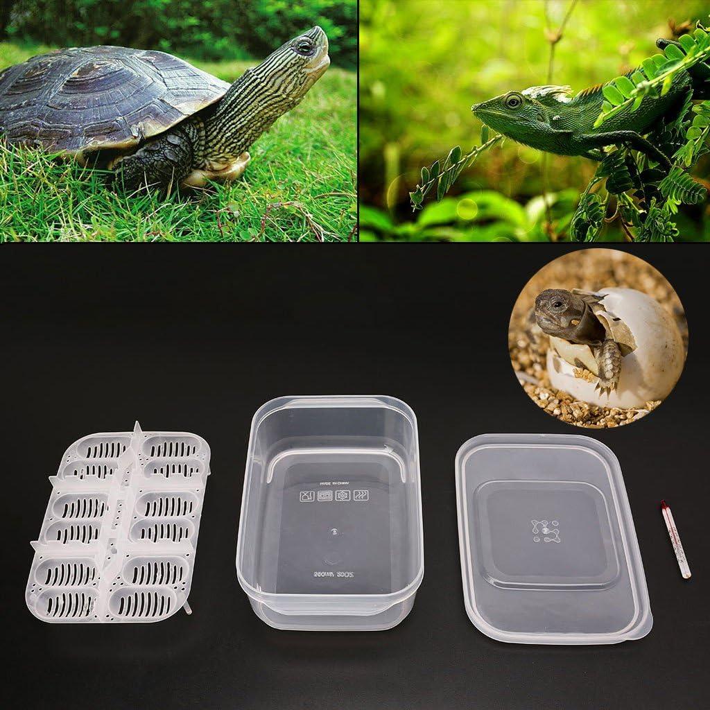 Yanhonin Herramienta de Incubation, 12Agujeros Bandeja de Incubation de Huevos de Reptiles con termómetro, Incubation de Huevos de Serpiente Lezard Gecko