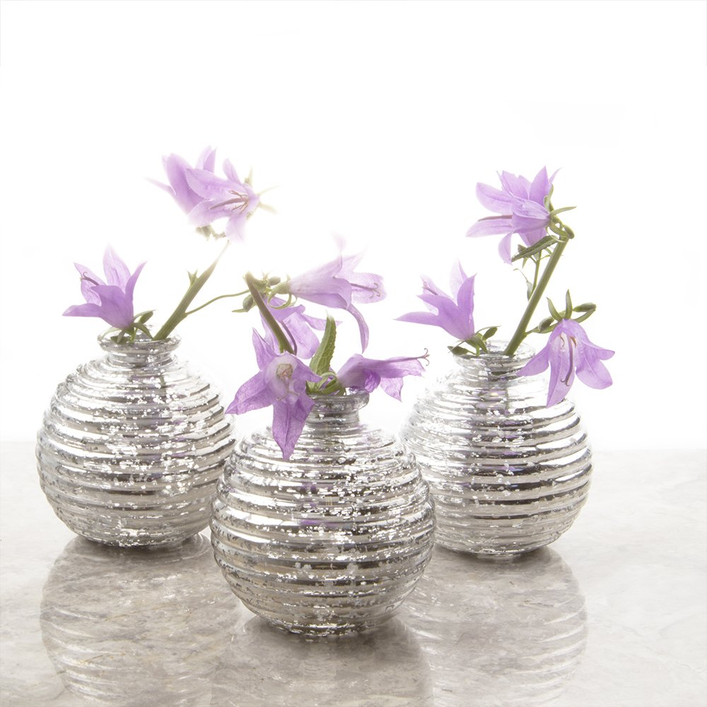 Chive - Set of 6 Smasak Small Round Glass Flower Vase Decorative Rustic Floral Vase for Home Decor Living Room Centerpieces and Events Single Flower Bud ...  sc 1 st  tibs & Chive - Set of 6 Smasak Small Round Glass Flower Vase Decorative ...