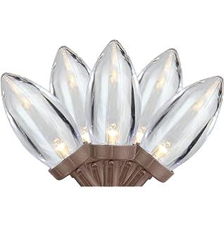 Amazon.com: Member\'s Mark Super-Bright LED Christmas Lights (Warm ...