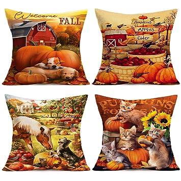 Amazon.com: Doitely Autumn Blessings Falling Leaf Pumpkin ...