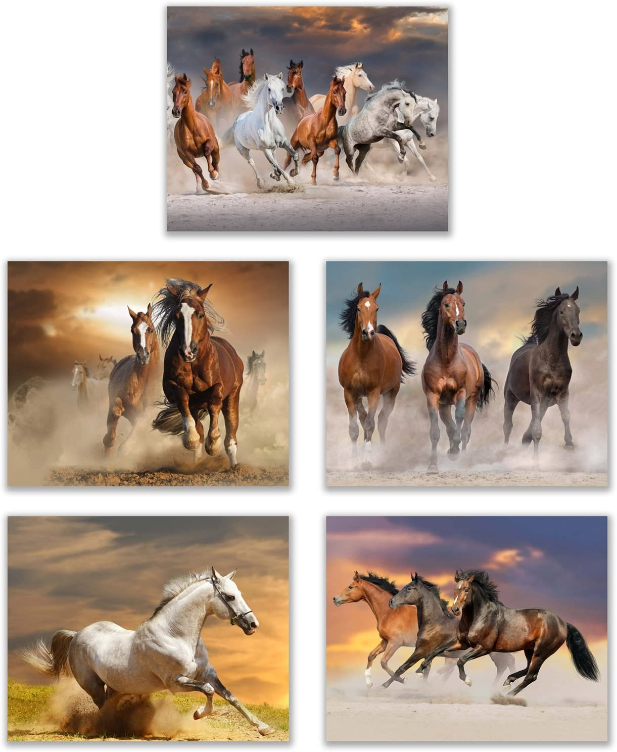 "Horse Inspired Beauty in The Desert (Set of 5): Showcase of Strength and Beauty of a Horse - Wall Art Decor Unframed Poster Prints (8""x10"")"