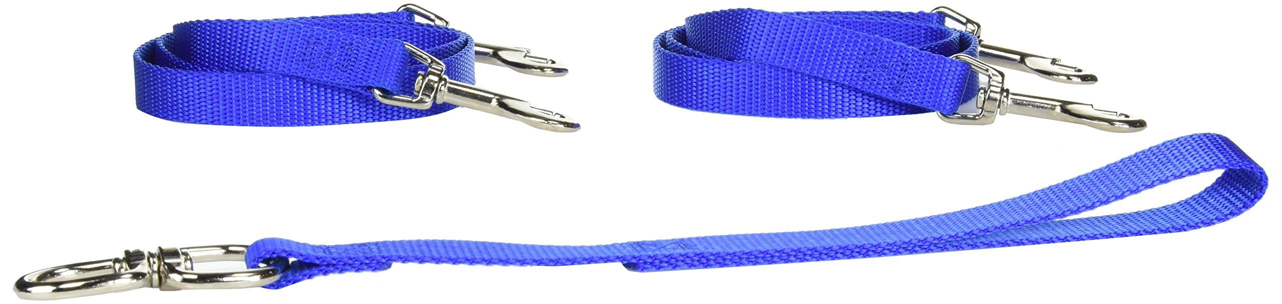Pet Walker-Plus Pet Leash for Dog, Medium, Blue