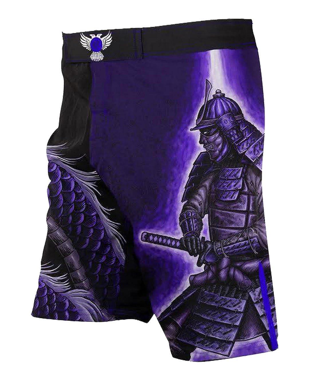Raven Fightwear Mens Void Element MMA Fight Shorts