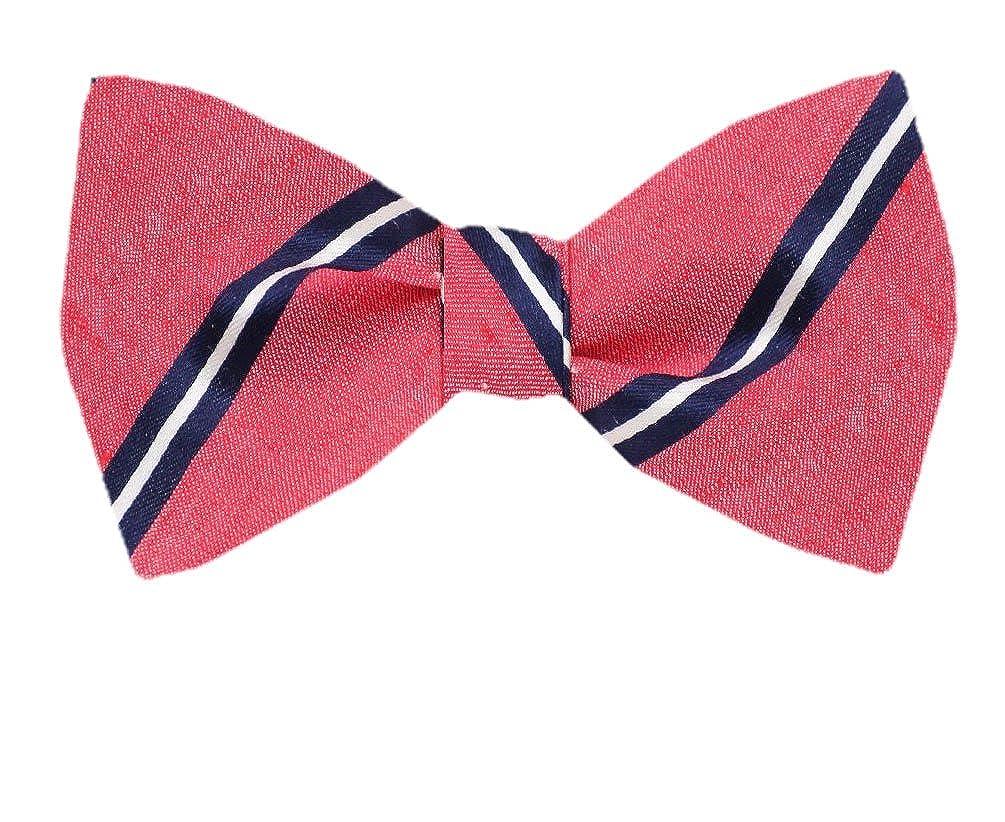 Mens Silk Self Tie Bowtie Tie Yourself Bow Ties FBTZ-1251