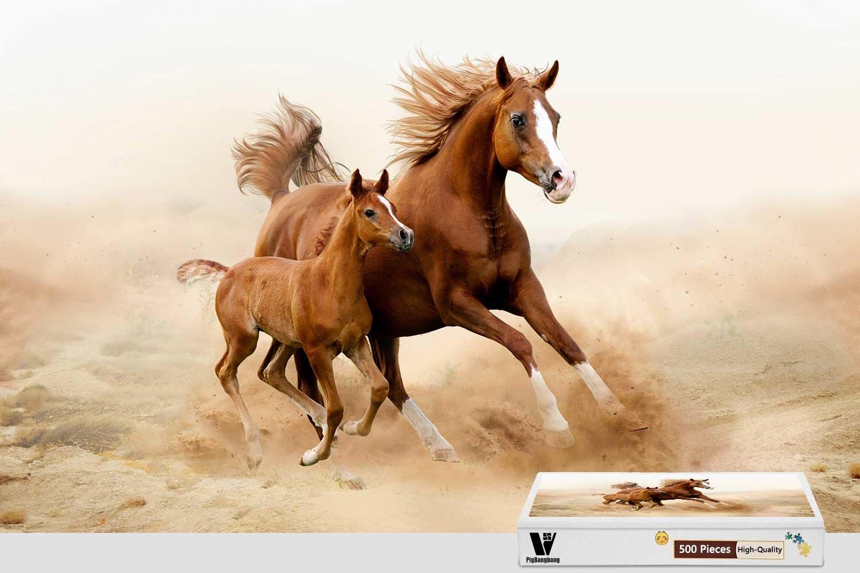 人気特価激安 pigbangbang、20.6 X X 15.1インチ Adult、Stainedアートパズルfor Kids Adult Have Jigsaw接着剤木製 – – Horseカブス2つ実行動物 – 500ピースジグソーパズル B07CSJSQQ7, 鹿児島市:8ecf9e69 --- fenixevent.ee