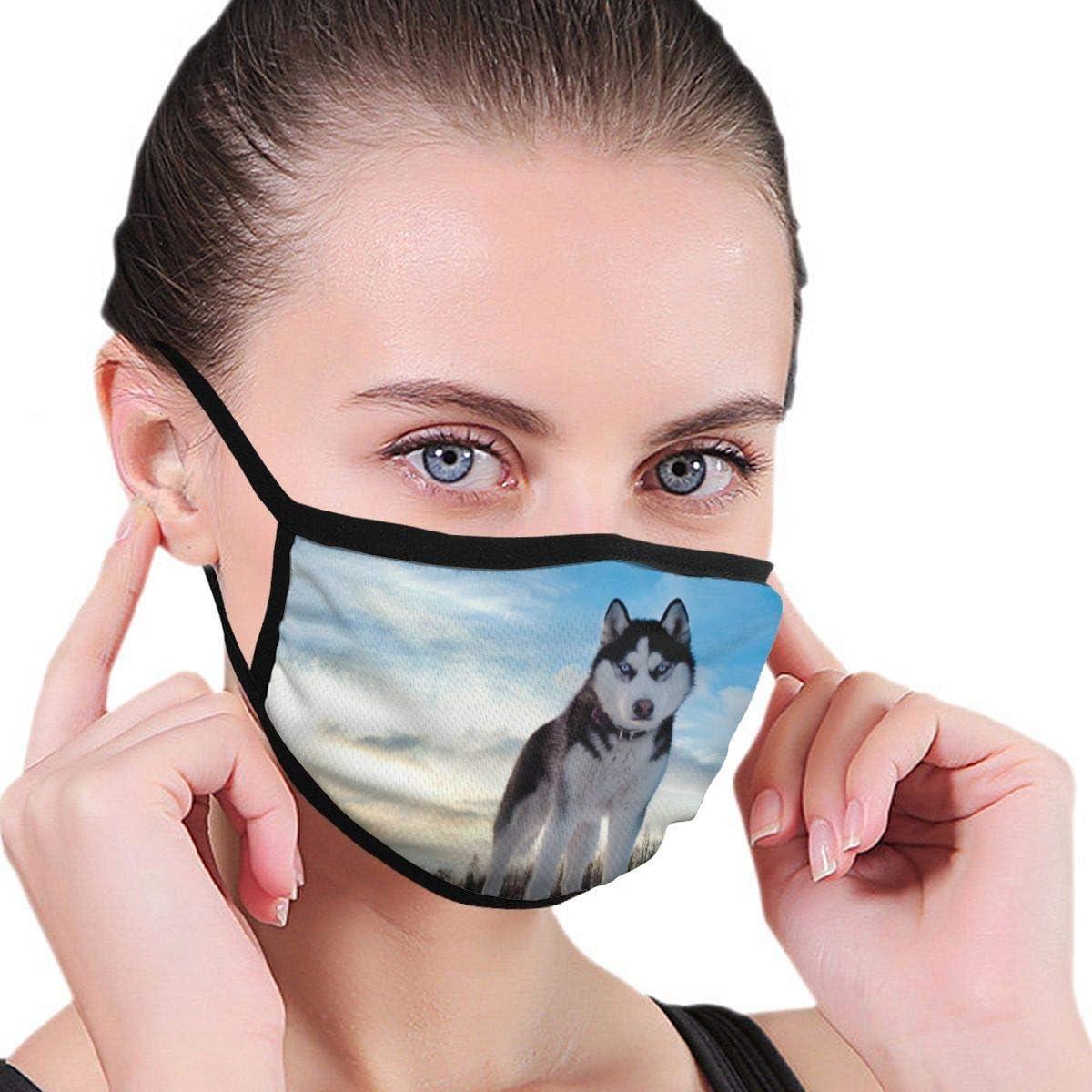 , Husky Dog Hill Snow Unisex Facial s lavable reutilizable boca diseño de moda