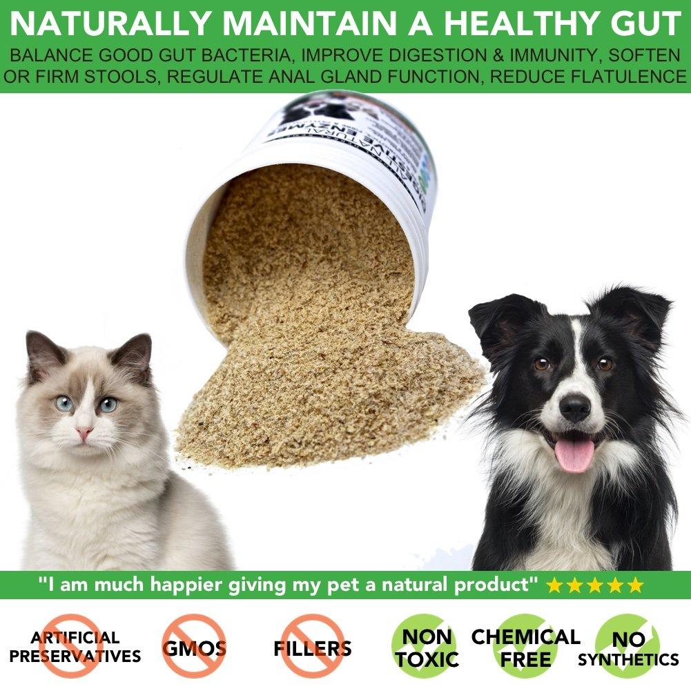 Probióticos, Prebióticos y Enzimas Digestivas Para Perros | 100% Natural 250g | Para Calmar el Estómago, la Digestión Mejorar la Inmunidad las ...