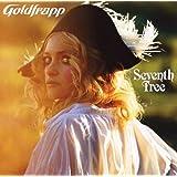 Seventh Tree