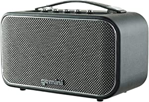 Gemini GTR-300 Portable Retro Bluetooth Speaker, Wireless Vintage 60W Speaker for Home and Outdoor Use