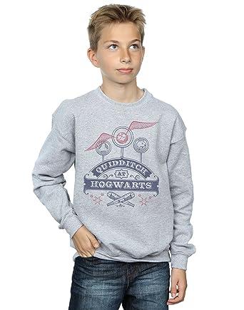 HARRY POTTER ni/ños Quidditch At Hogwarts Camiseta