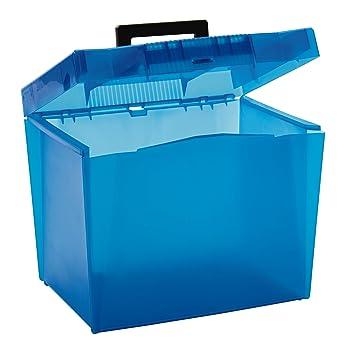 Pendaflex economía cajas de archivo, Frost, varios; claro, amarillo, azul, verde (no color elección), 1 caja (20881): Amazon.es: Oficina y papelería