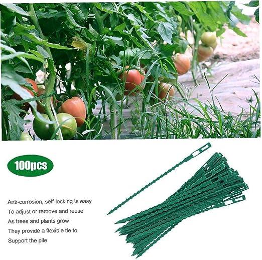 Angoter 100pcs Verde jardinería Parra Plantas Atadura de Cables ...