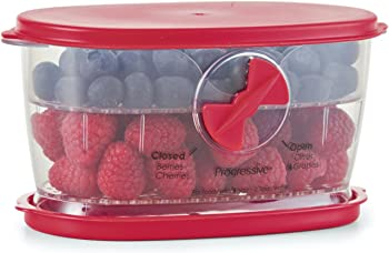 Prepworks by Progressive Berry Keeper